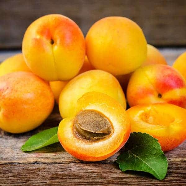 Apricot E-juice Flavour | Mt Baker Vapor International
