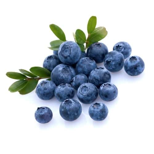Mountain Huckleberry E-juice Flavour | Mt Baker Vapor Wholesale
